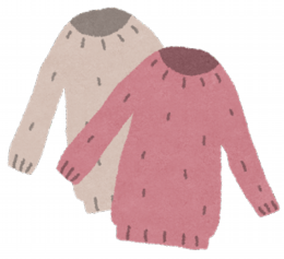 fashion_sweater.png